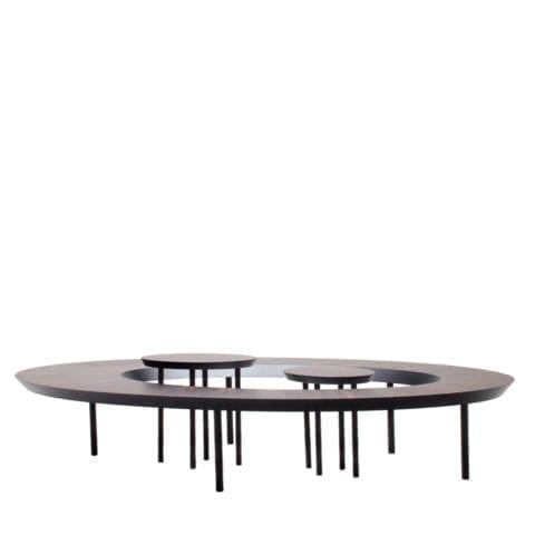 The Invisible Collection Wooden Bean Coffee Table Nada Debs